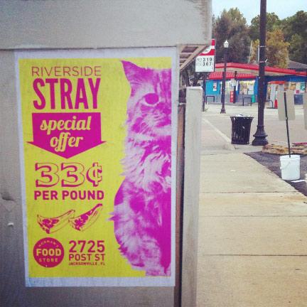 Riverside Stray